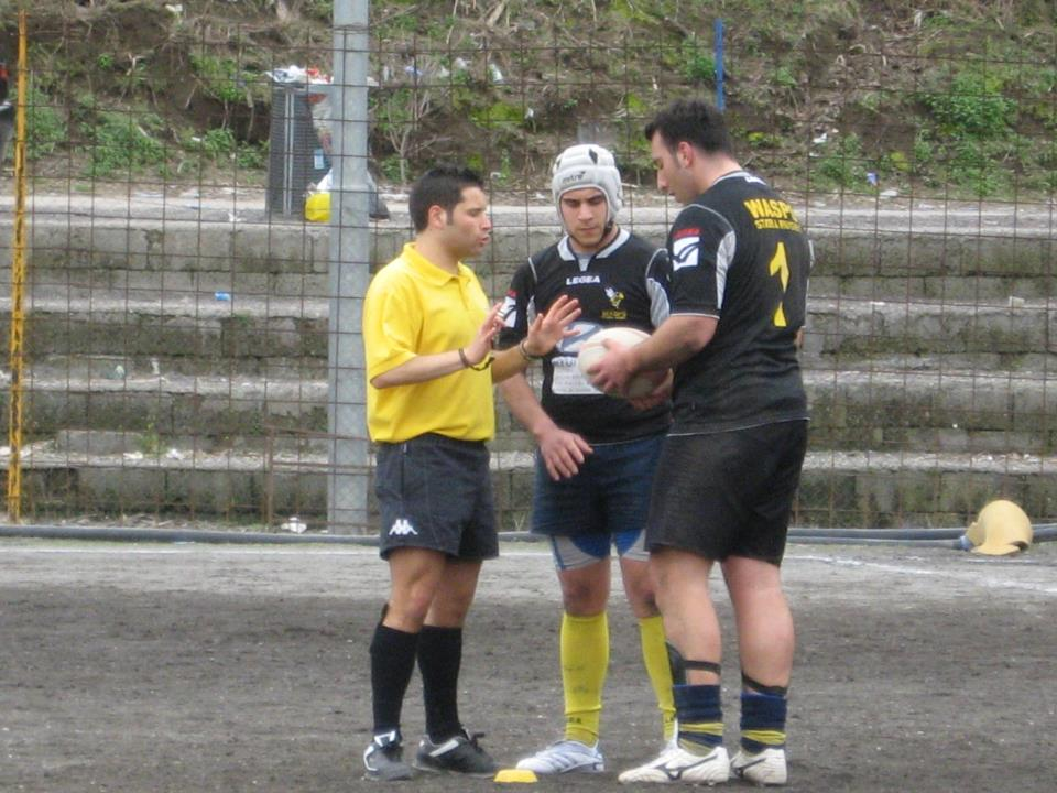 Wasps Stabia